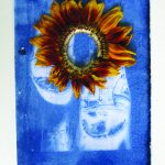 Davina Kirkpatrick's Cyanotype of slippers with sunflower, from residency at CAKE kildare, Ireland