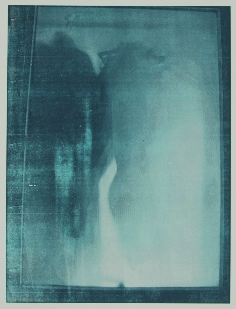 Presence of absence III Sepia duo-tone screenprint