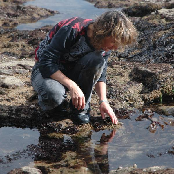 Siddy rock-pooling