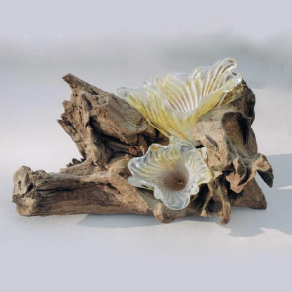 Staghorn Fungus Sculpture on Bogwood